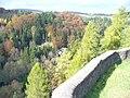 Burgterrasse, Schoenecken - geo.hlipp.de - 6251.jpg