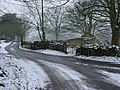 Burleigh Lane - geograph.org.uk - 9.jpg