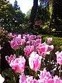 Butchart garden victoria canada - panoramio (2).jpg