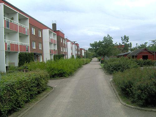 Bitrdande rektor till Hagalundskolan i Dalby
