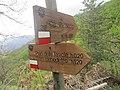 CAI 319 Monte Mandria Segnavia.jpg