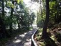 CHOSZCZNO- droga wokół jeziora - panoramio.jpg
