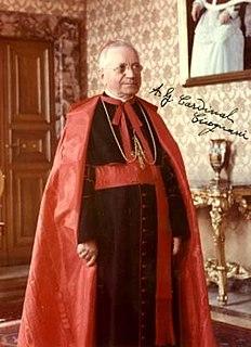 Amleto Giovanni Cicognani Catholic cardinal