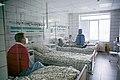 COVID-19 patient medical examination performed in a ward. Bucha, Kyiv oblast.jpg