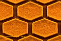 CSIRO ScienceImage 425 Aligned Hexagonal Nanotubes.jpg