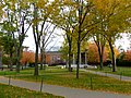 Cambridge - USA - Harvard University - panoramio.jpg