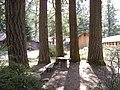 Camp Waskowitz - 12.jpg