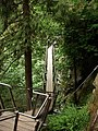 Capilano-Suspension-Bridge-Cliff-Walk-8957.jpg