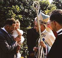 Cardinal Jean-Louis Guyot.jpg