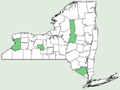 Carex meadii NY-dist-map.png