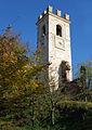 Carpenedolo-Torre vecchia.jpg