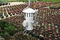 Centre horticole de la Ville de Paris a Rungis 2011 083.jpg