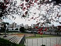 Centro da cidade de Catanduva visto da Praça jornalista Lecy Neubern Pinotti, já conhecida como Praça do Idoso, no São Francisco. Esta praça é utilizada para a tradicional Feira Regional de Artesanato - panoramio (1).jpg