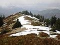 Cestou z Veterného - panoramio.jpg