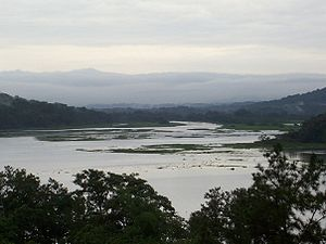 Chagres River - The Chagres River as seen from the Rainforest Resort in Gamboa, Panama
