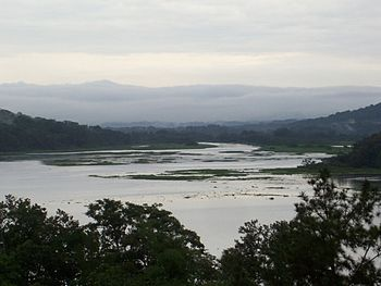 English: View of the Chagres River in Gamboa, ...