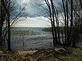 Cherkas'kyi district, Cherkas'ka oblast, Ukraine - panoramio (93).jpg