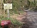 Chilbridge, pheasant - geograph.org.uk - 1773317.jpg