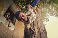 Children playing on the tree.jpg