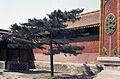 China1982-335.jpg