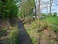 Chlumec, Ždírnický potok, poblíž hřiště, proti proudu.jpg