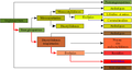 Classification phylogénétique test1.png