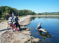 Cleaning at Lock and Dam 8 (10019396524).jpg