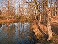 Colomiers - Parc du Cabirol - 20110211 (1).jpg