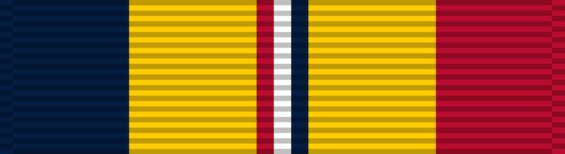 File:Combat Action Ribbon.png