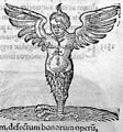 Conradus Lycosthenes, Prodigiorum ac ostento Wellcome L0031587.jpg