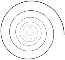 Maud Vantours US | spirale