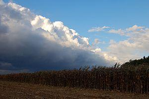a cornfront meets a weatherfront