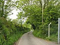 Country lane below Rhyd-yr-arian - geograph.org.uk - 806800.jpg