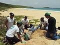 Culebra Natl Wildlife Refuge, Puerto Rico (5167821834).jpg