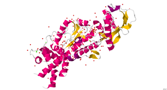 CyaA - Crystal structure of the N-terminal adenylyl cyclase domain (ACD) of B. pertussis cyaA complexed with the C-terminal domain of Xenopus calmodulin.