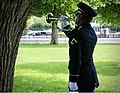 DCARNG Honor Guard Bugler.jpg