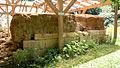 Dacian Fortress of Tilisca - 07.jpg