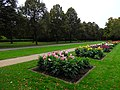 Dahliengarten, Großer Garten, Dresden (293).jpg