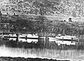 Dalles, Idaho and Iris at The Dalles 1863.jpg