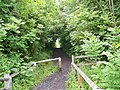 Deerness Valley Railway Path near Ushaw Moor - geograph.org.uk - 1357508.jpg
