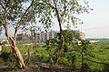 Delhi Public School - Amta Road - West Bengal State Highway 15 - Domjur - Howrah 2014-04-14 0564.JPG