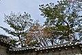 Deoksugung Palace, Seoul (25) (41073040142).jpg