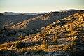 Desert sunrise (13496518263).jpg