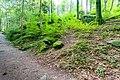 Die Gaishölle (Sasbachwalden) jm53069 ji.jpg