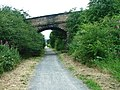 Disused Railway Bridge, Lanchester Valley Walk - geograph.org.uk - 30184.jpg
