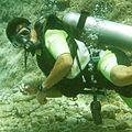 Diver Mexico (Pato Garza-Flickr).jpg
