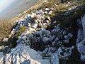 Dragoman Monastery ruins 1.jpg