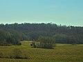 Driftless Area - panoramio (66).jpg