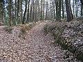 Droužkovská cesta (06).jpg