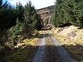 Dunoon, Tom Odhar-Bishops Glen Track - geograph.org.uk - 150125.jpg